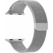 Ремешок Lyambda Capella для Apple Watch 38/40 мм Silver